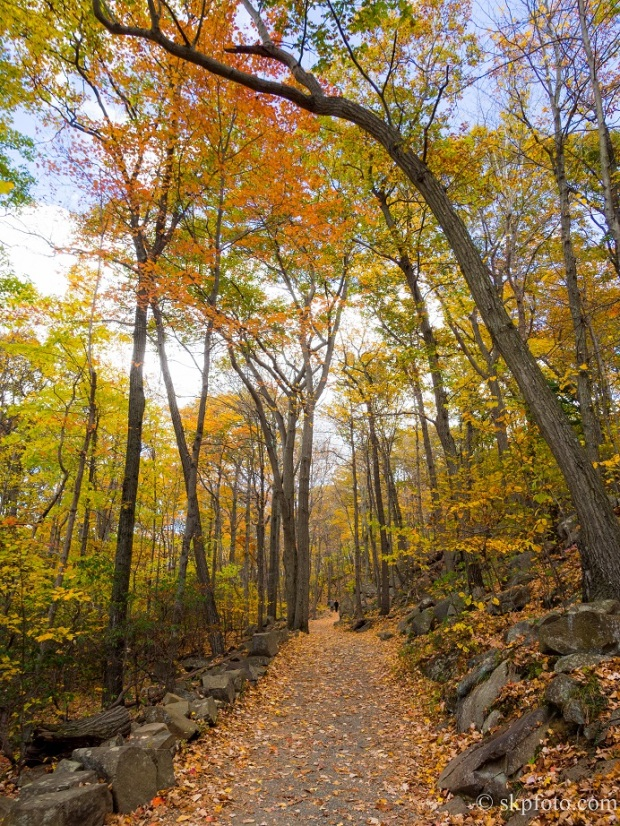 New England Autumn Foliage